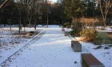 눈이 내린 공원에서,전라남도 담양군
