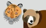 곰과 호랑이의 내기,충청남도 공주시