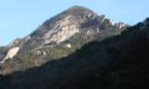 산을 덮는 산,충청남도 계룡시
