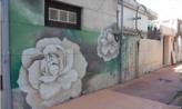 낡은 벽에 꽃이 피니,광주광역시 동구