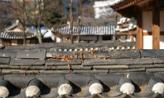 떠나보내는 일,대전광역시 대덕구
