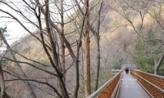 산이 아닌 곳을 걷다,대전광역시 동구