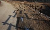 두 개의 울타리 ,경상북도 봉화군