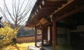 따스한 잎,경상북도 경산시