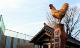 황금닭의 전설,경기도 시흥시