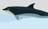 고래는 고래빵을 닮았을까,울산광역시 남구