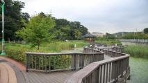 첨단과 생태의 하모니, 구로,서울특별시 구로구