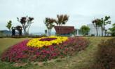 꽃이 꽃을 피웠다,부산광역시 연제구