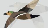 희망이의 아름다운 날개짓,전라북도 군산시