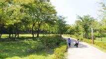 공원의 천국, 양천구,서울특별시 양천구