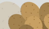 감자탕 아닌 감자국,서울특별시 은평구