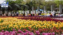 동심과 함께하는 봄맞이,대전광역시 중구