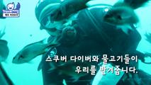 바다속 탐험 마라도 잠수함,제주특별자치도 서귀포시