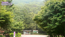 아름다운 절경 속리산국립공원,충청북도 보은군