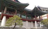 도심 속의 천 년 고찰, 봉은사,서울특별시 강남구