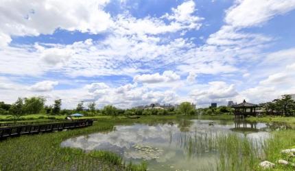 도심 속 한가운데의 오아시스, 한밭수목원,대전광역시 서구