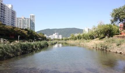 도심 속 쉼터 온천천,부산광역시 동래구