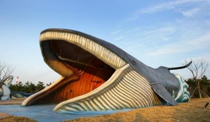 고래 바다에 풍덩~ 울산고래축제 ,울산광역시 남구