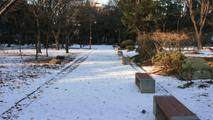 눈이 내린 공원에서
