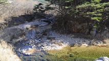 계곡 물소리