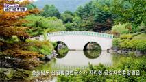 계룡산 국사봉 자락에 자리한 금강자연휴양림,세종특별자치시