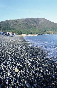 해양관광특구도시 거제