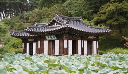 정갈한 옛 삶이 남아있는 곳, 강릉 선교장,강원도 강릉시