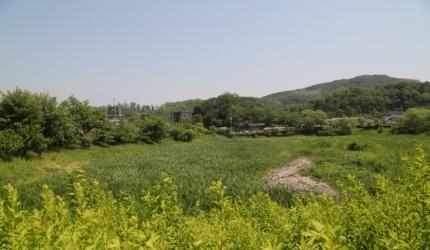 까만 물속 생명 보금자리, 안터생태공원,경기도 광명시