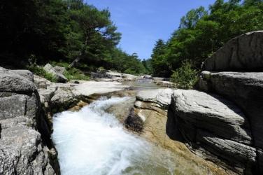 계곡물 맑은 소리와 휴양림에 쉬어갈까, 대야산 탐방,경상북도 문경시
