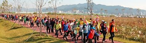 강서낙동강갈대꽃축제