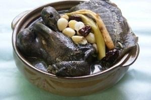 한방붕어용봉탕,충청북도 진천군,지역음식