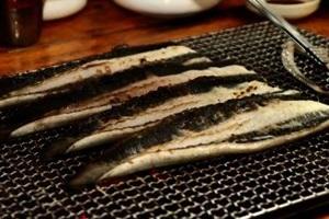바다장어,국내여행,음식정보