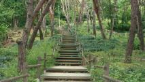 산책하듯 산행하듯 숲속 나들이