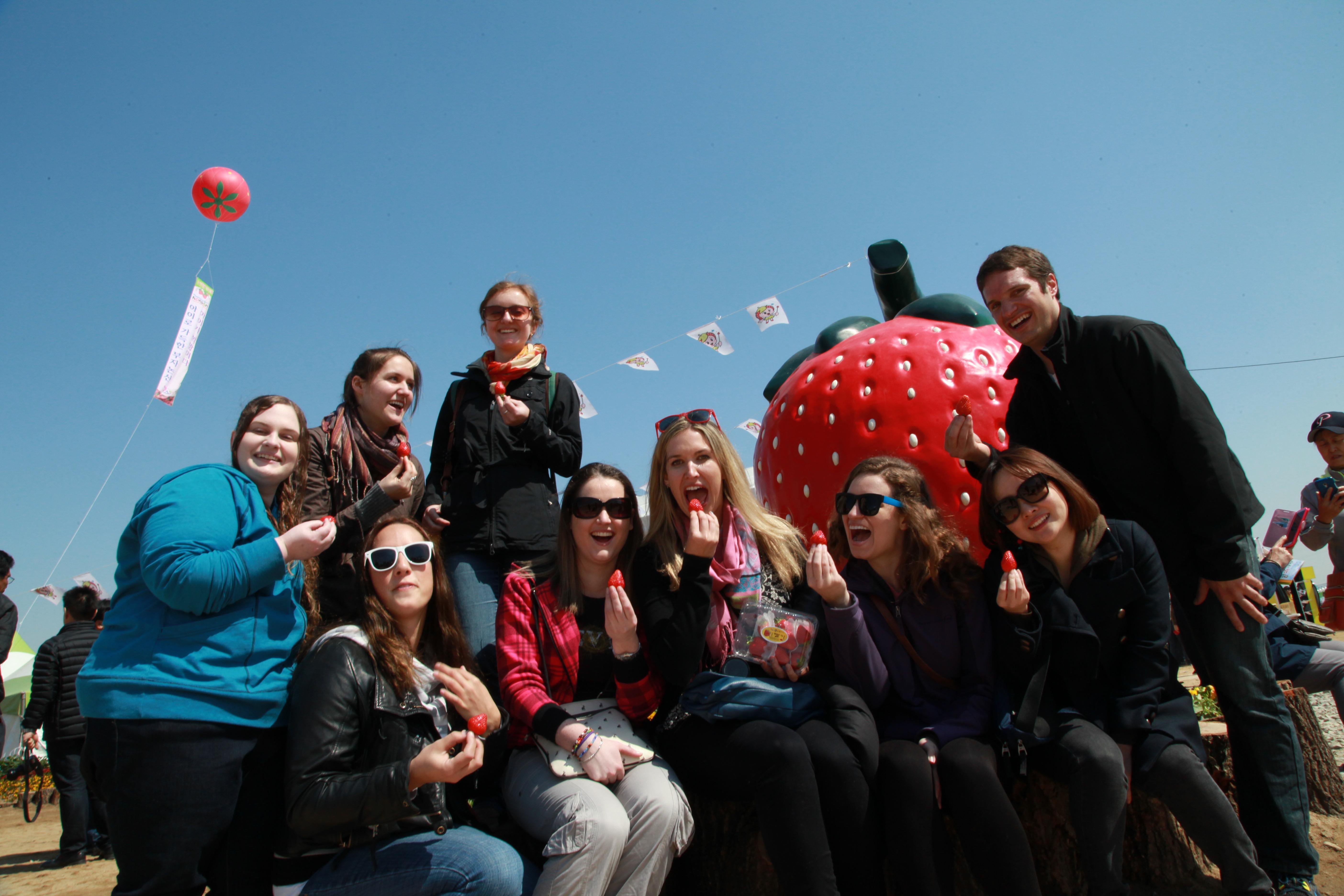 논산딸기축제,지역축제,축제정보