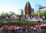 고양국제꽃박람회,지역축제,축제정보
