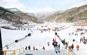칠갑산얼음분수축제,지역축제,축제정보