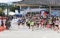 DMZ국제평화마라톤대회,지역축제,축제정보