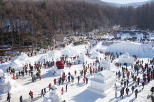 태백산 눈축제,강원도 태백시,지역축제,축제정보