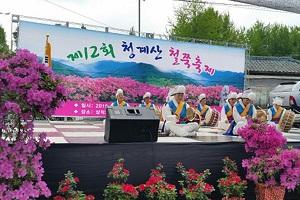 청계산철쭉축제,경기도 성남시,지역축제,축제정보