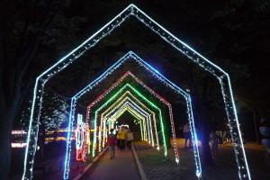 춘천호수별빛나라축제,국내여행,음식정보