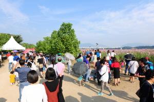 구리코스모스축제,경기도 구리시,지역축제,축제정보