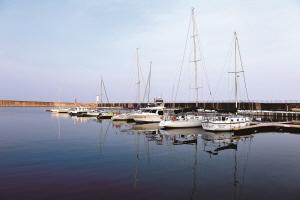 수산항 바다체험축제,강원도 양양군,지역축제,축제정보