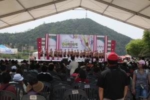 한국과자축제,경상북도 봉화군,지역축제,축제정보