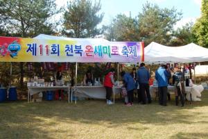 온새미로 축제,충청남도 보령시,지역축제,축제정보