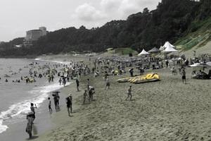 중문색달해변축제,제주특별자치도 서귀포시,지역축제,축제정보