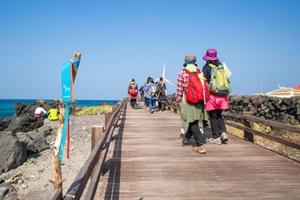 제주올레걷기축제,제주특별자치도 서귀포시,지역축제,축제정보