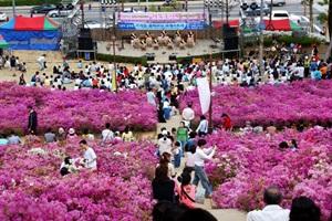 군포철쭉축제,경기도 군포시,지역축제,축제정보