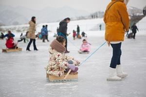 영월동강겨울축제,강원도 영월군,지역축제,축제정보