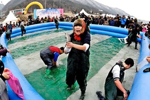 겨울내설악강변축제,강원도 인제군,지역축제,축제정보