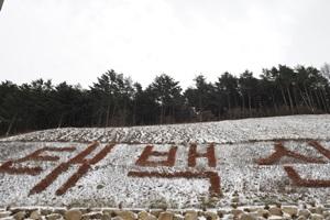 태백산전국등반대회,강원도 태백시,지역축제,축제정보